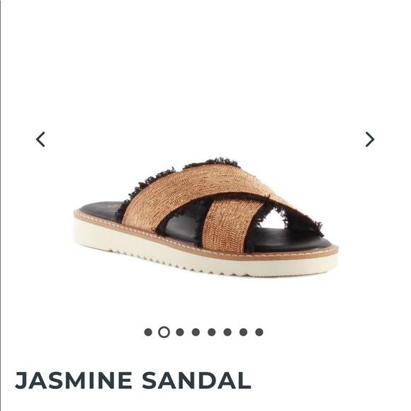 Seychelles Shoes - Seychelles Jasmine Sandal Black and Gold